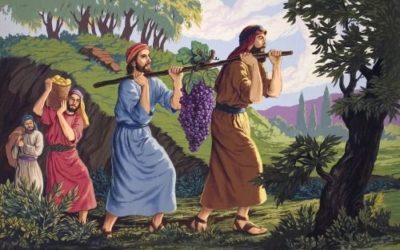 Doze homens são enviados para espiar a terra de Canaã